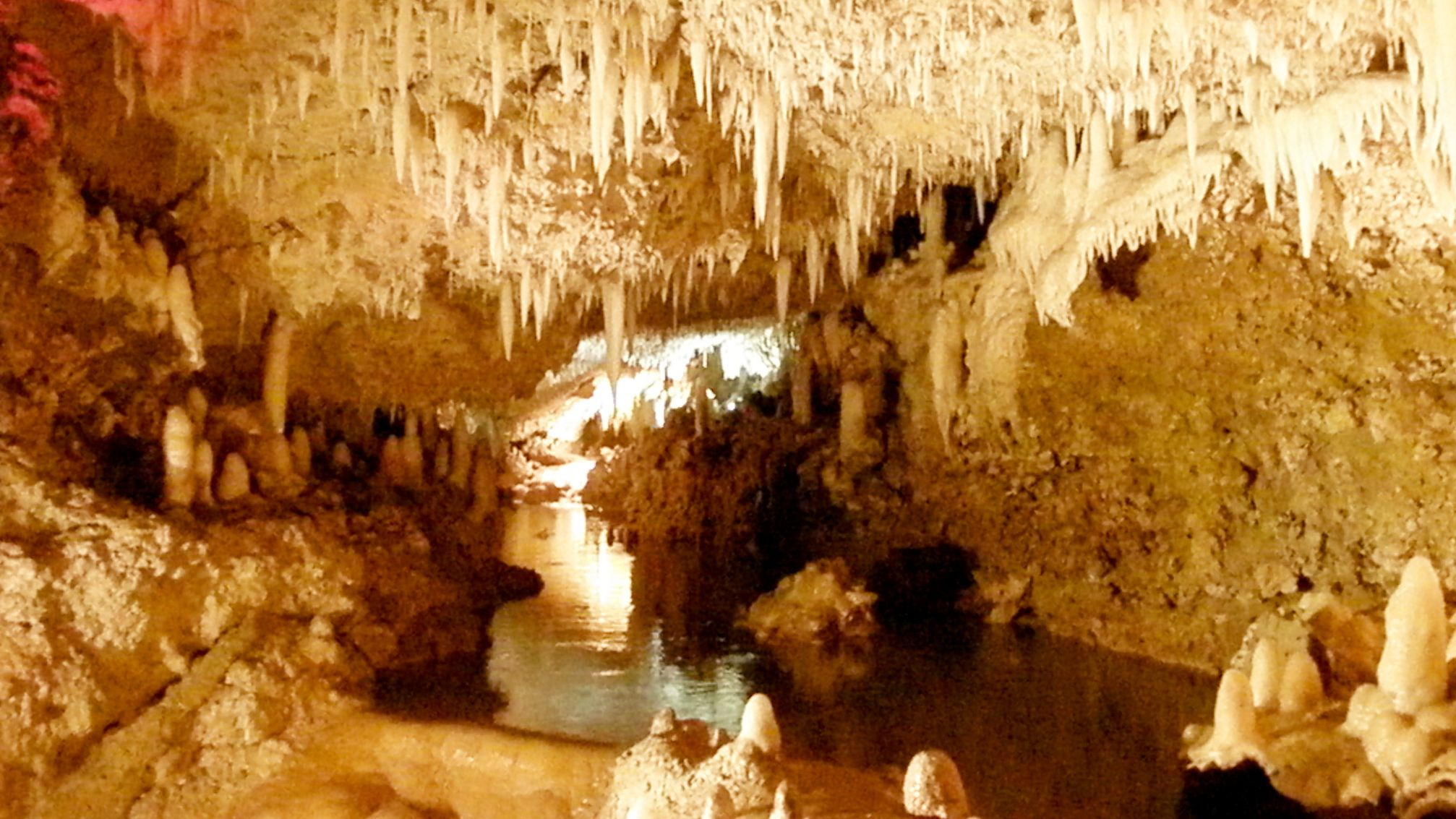 harrisons cave in barbados