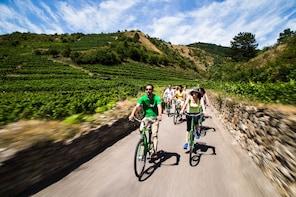 Fahrradtour durch die Wachau und Weinverkostung