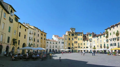 Exterior view on Pisa and Lucca Full-Day Tour in Italy