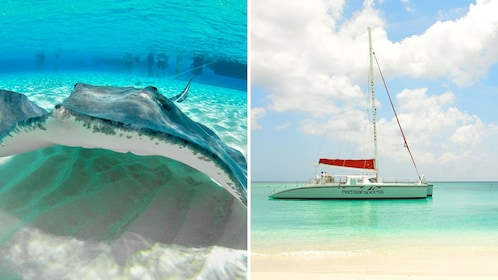 Combo image of stingray and catamaran in Grand Cayman