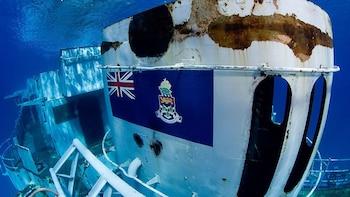 Kittiwake Wreck & Reef Snorkeling