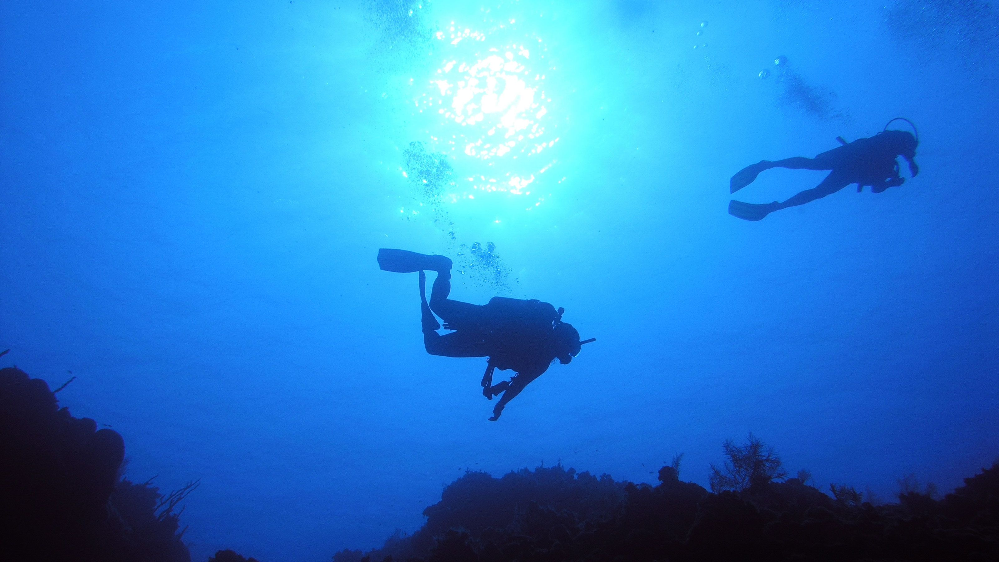 Suba drivers exploring the ocean in Grand Cayman