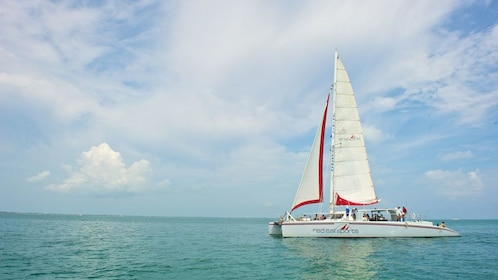 Sailboat in the water in Grand Cayman