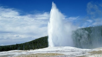 Yellowstone National Park Lower Loop Small-Group Tour