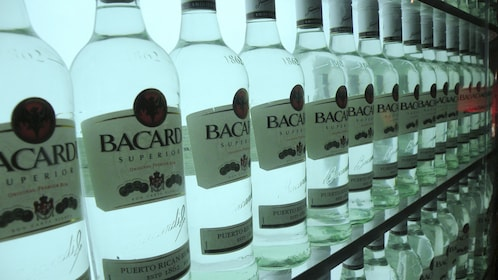 Close up of Bacardi Rum bottles lined up