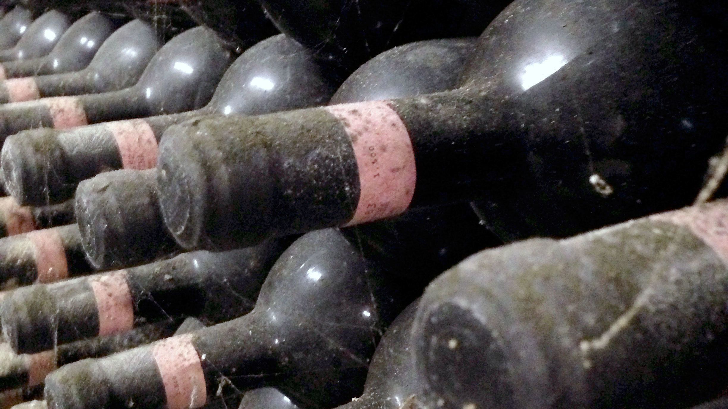 Wine bottles on Tuscany Wine Tasting Tour in Italy
