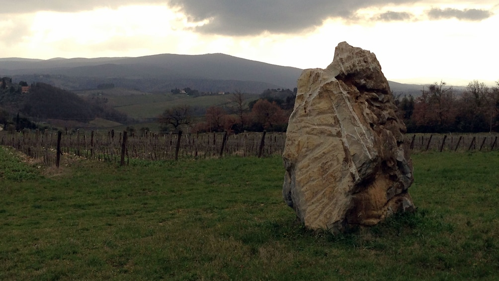 Foto 4 von 5 laden Large boulder on Tuscany Wine Tasting Tour in Italy