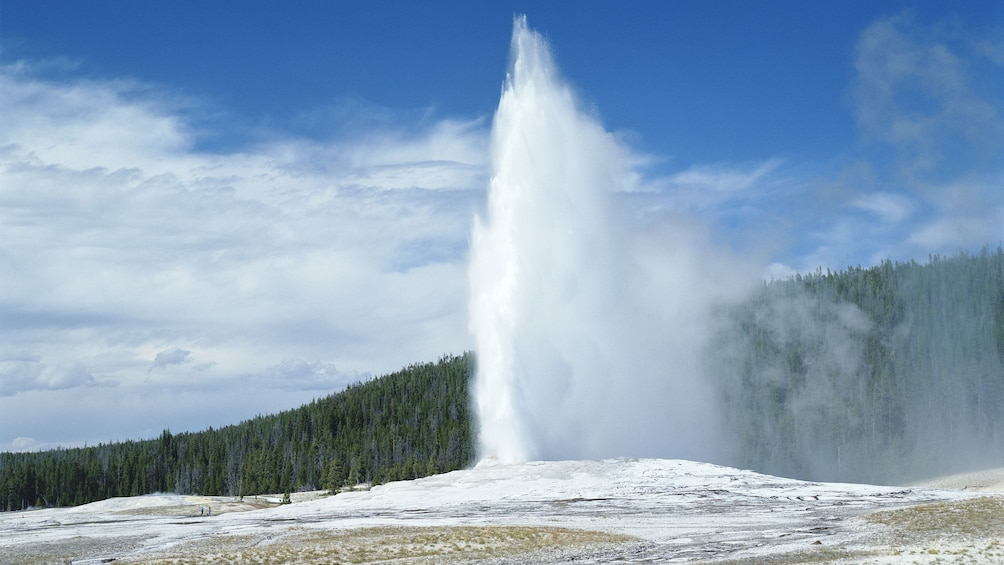 Show item 3 of 6. Gorgeous day view of Yellowstone National Park