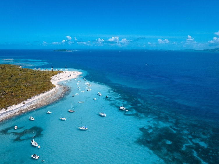 Catamaran Sail & Snorkeling in the Caribbean with Lunch