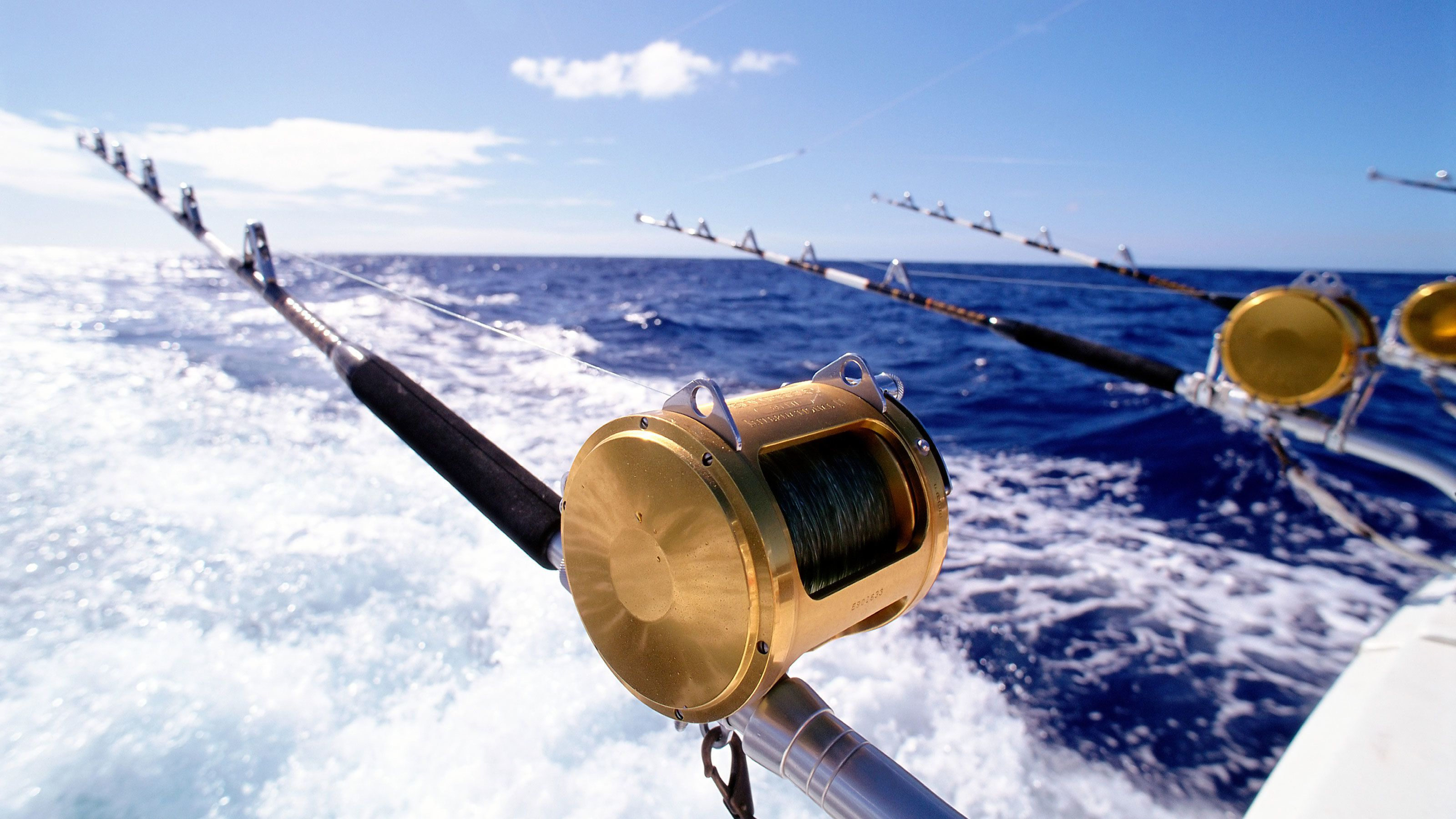 Fishing poles are cast out to sea in hope to reel in a catch