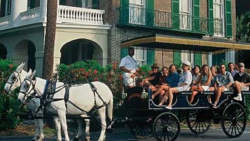 Group of people in a horse drawn carriage in Charleston