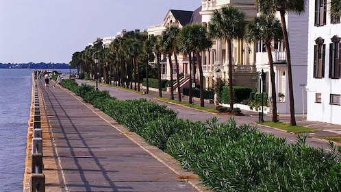 Waterfront homes in Charleston