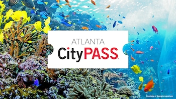 Atlanta CityPASS: Save at Must-See Attractions