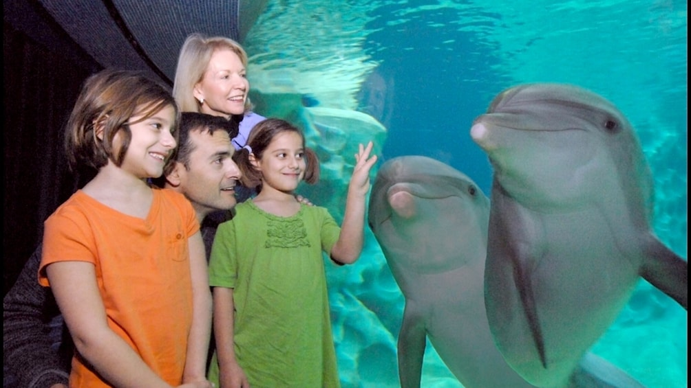 Atlanta CityPASS: Family at Georgia Aquarium