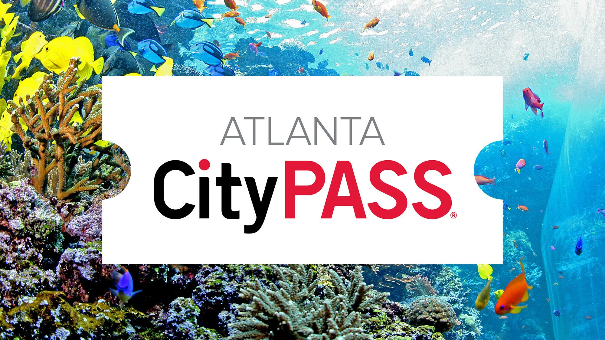 Atlanta CityPASS: 5 Must-See Museums & Attractions