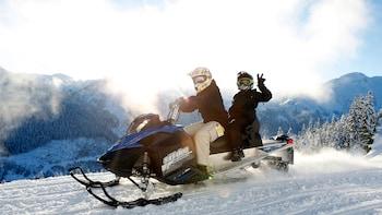 Wilderness Adventure Tour via Snowmobile