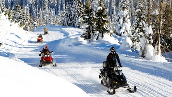 Scenic Snowmobile Tour - 2 hours