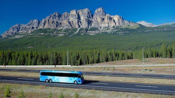 Explore Jasper & Maligne Lake Cruise