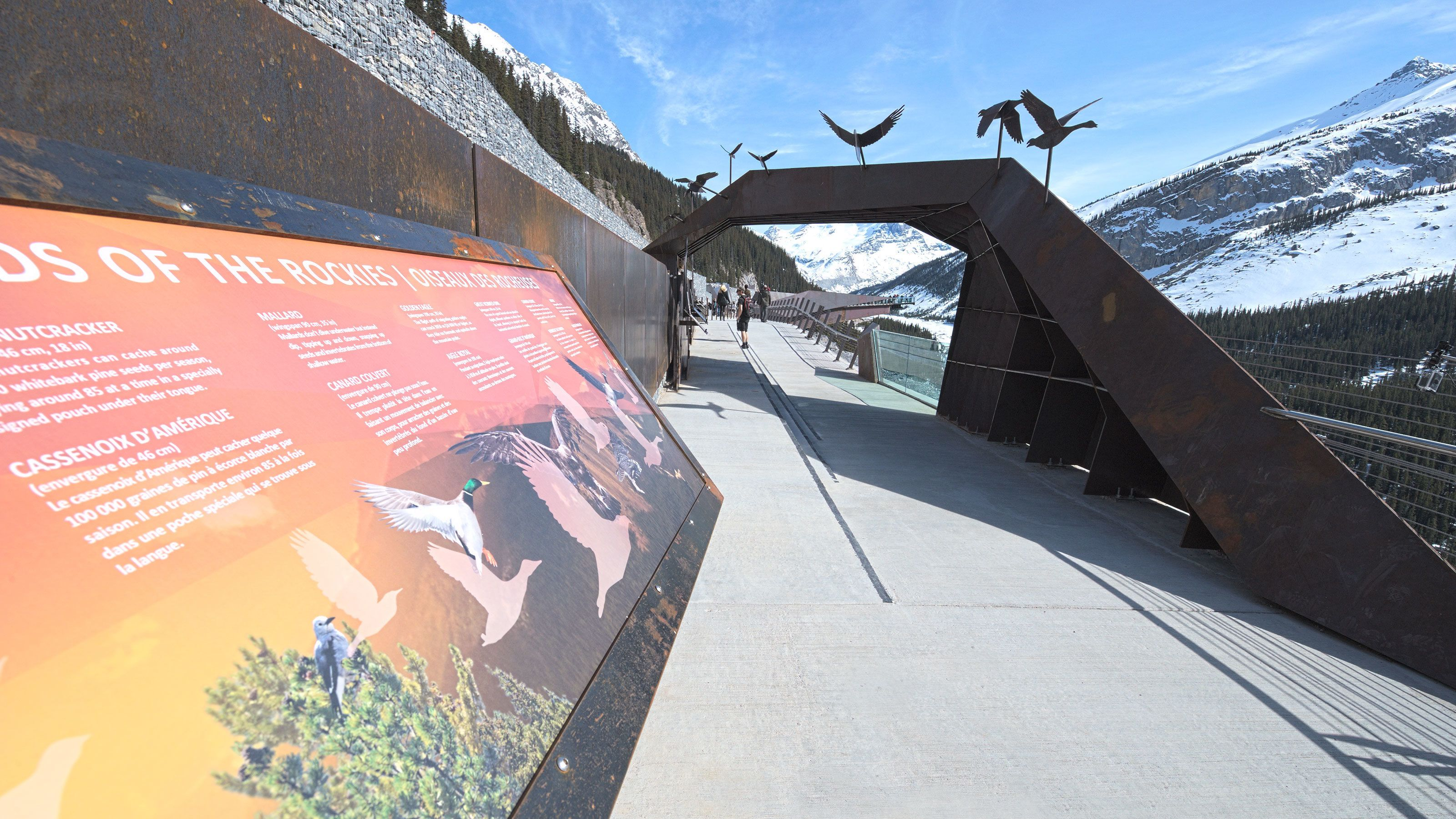 Info panels adorn the Glacier Skywalk with insight on the surrounding wilderness
