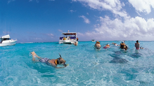 Snorkeling group with catamaran nearby in St Kitts