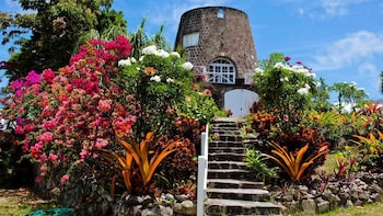Nevis Island Guided Tour