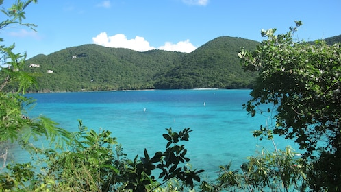 Explore the azure waters of Caneel Bay and forest trails of Turtle Point
