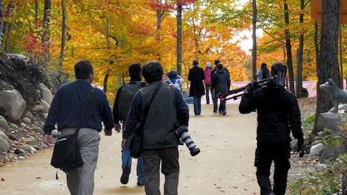 Tourists embark on Canyon Sainte-Anne to take photos of the fall foliage