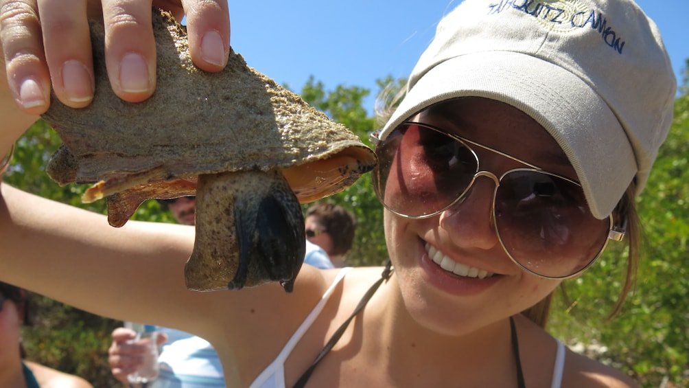 Show item 5 of 5. Woman inspecting a sea snail on the Virgin Islands