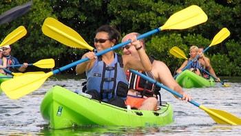 St. Thomas Mangrove, Kayak & Snorkeling Tour