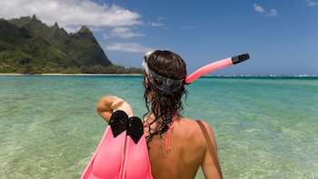 Snorkeling & Beach Safari