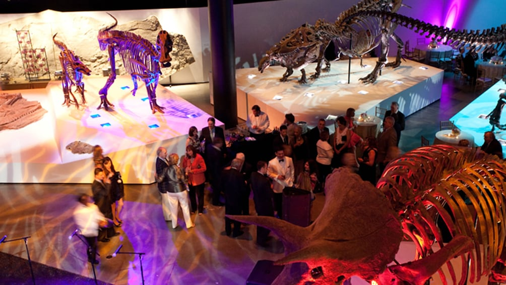 Show item 5 of 9. Houston CityPASS: Admission to Top 5 Houston Attractions