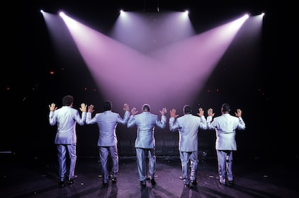 The Temptations 2010 - from back.jpg