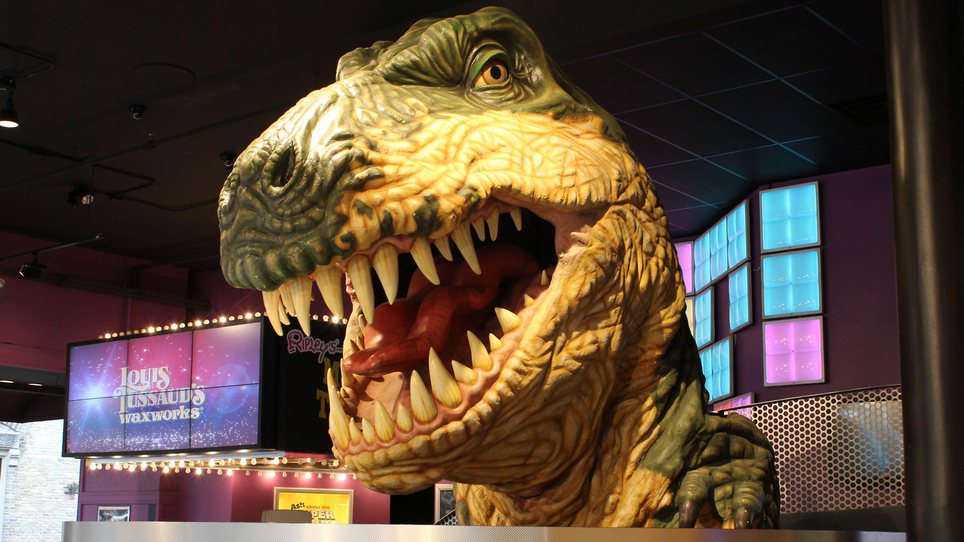 T-rex exhibit in Ripley's Believe It or Not!