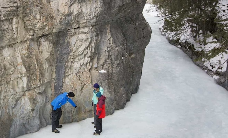 Show item 2 of 10. Grotto Canyon Icewalk