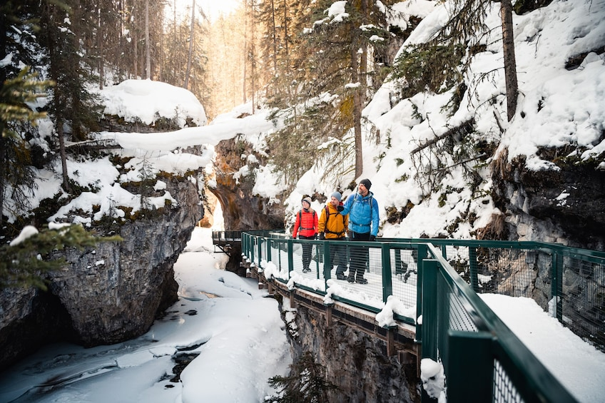 Show item 1 of 9. Discover Banff: Johnston Canyon Icewalk Tour