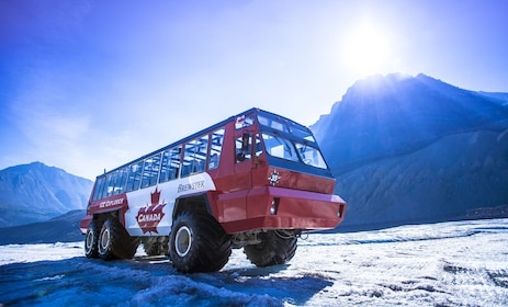 Full-Day Icefields Parkway Tour