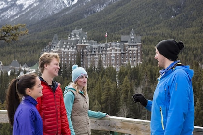 Wildlife & History Tour of Banff