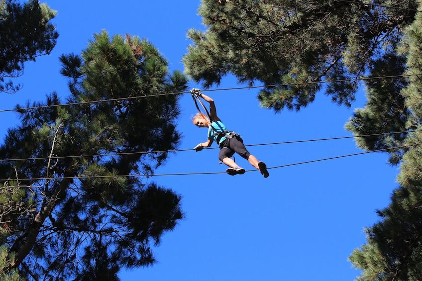 Show item 5 of 10. Adrenalin Forest Auckland Adventure Park