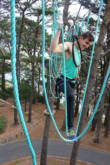 Show item 4 of 10. Adrenalin Forest Auckland Adventure Park