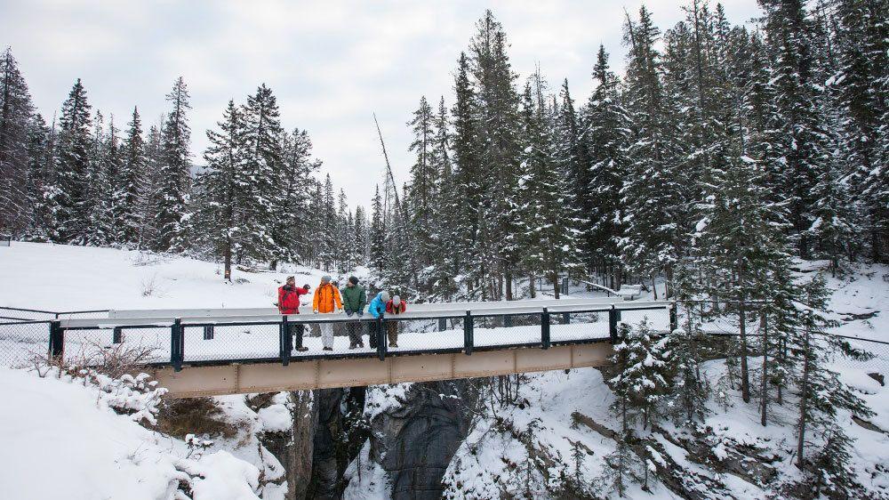 Group of people walk across a snowy bridge in the woods