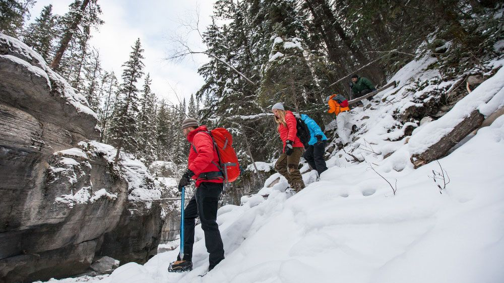 Hikers going downhill on a Maligne Canyon Icewalk in Jasper