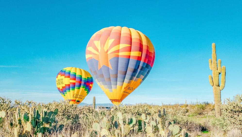 Foto 1 von 8 laden Phoenix Sunrise Hot Air Balloon Ride