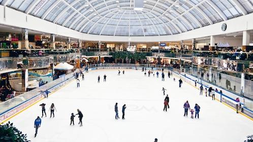 Ice skating in Edmonton