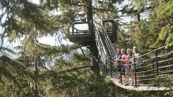 Ziptrek Whistler Forest Zipline Adventure