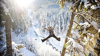 Ziptrek Whistler Forest Zipline Adventure