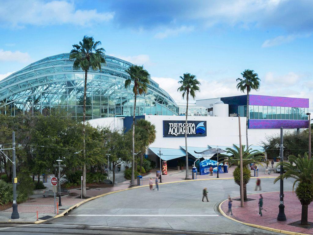 The Florida Aquarium Building Exterior No Trolley.png