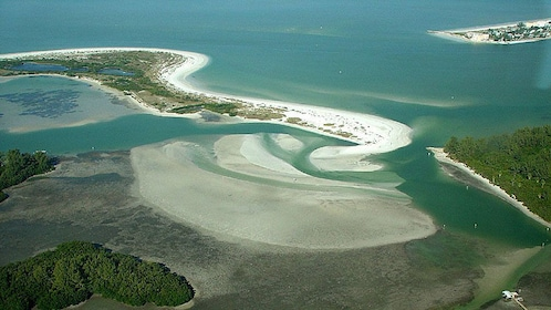 Shell Key Island in Tampa Bay