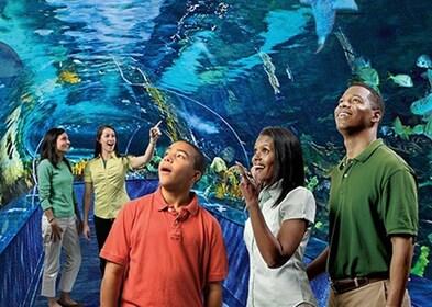 Ripley's Aquarium of Myrtle Beach Tickets