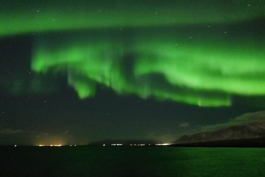 Show item 5 of 12. Northern Lights Ocean Cruise