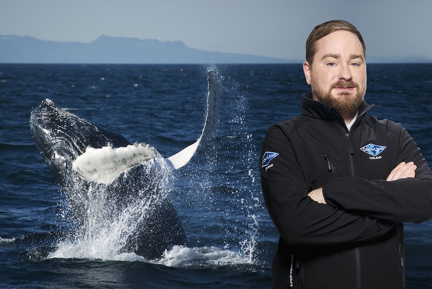 Show item 1 of 9. Whale Watching & Golden Circle Full-Day Tour